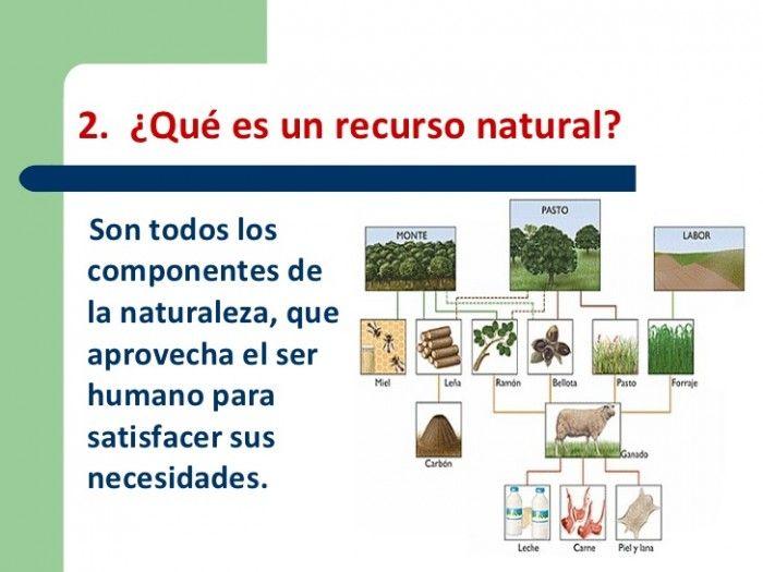 Recursos Naturales Renovables Y No Renovables Ecologia Hoy Recursos Naturales Renovables Renovables Y No Renovables Tipos De Recursos Naturales