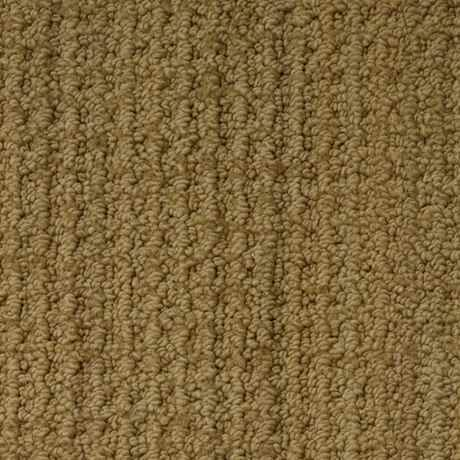 Molasses Berber Loop Active Family Carpet Stainmaster Carpet Berber