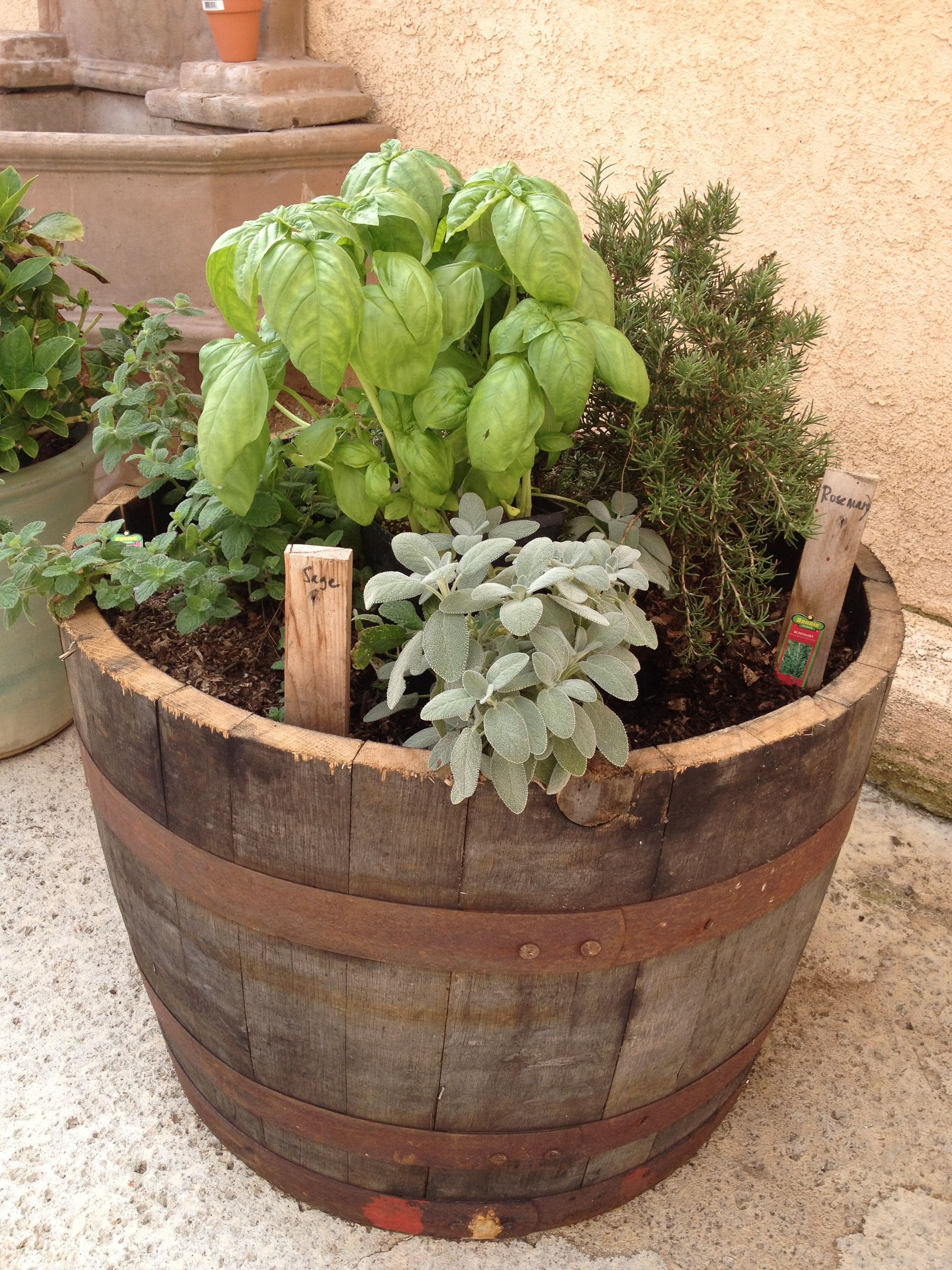 Herb garden in wine/whiskey barrel | Things I finally made after ...