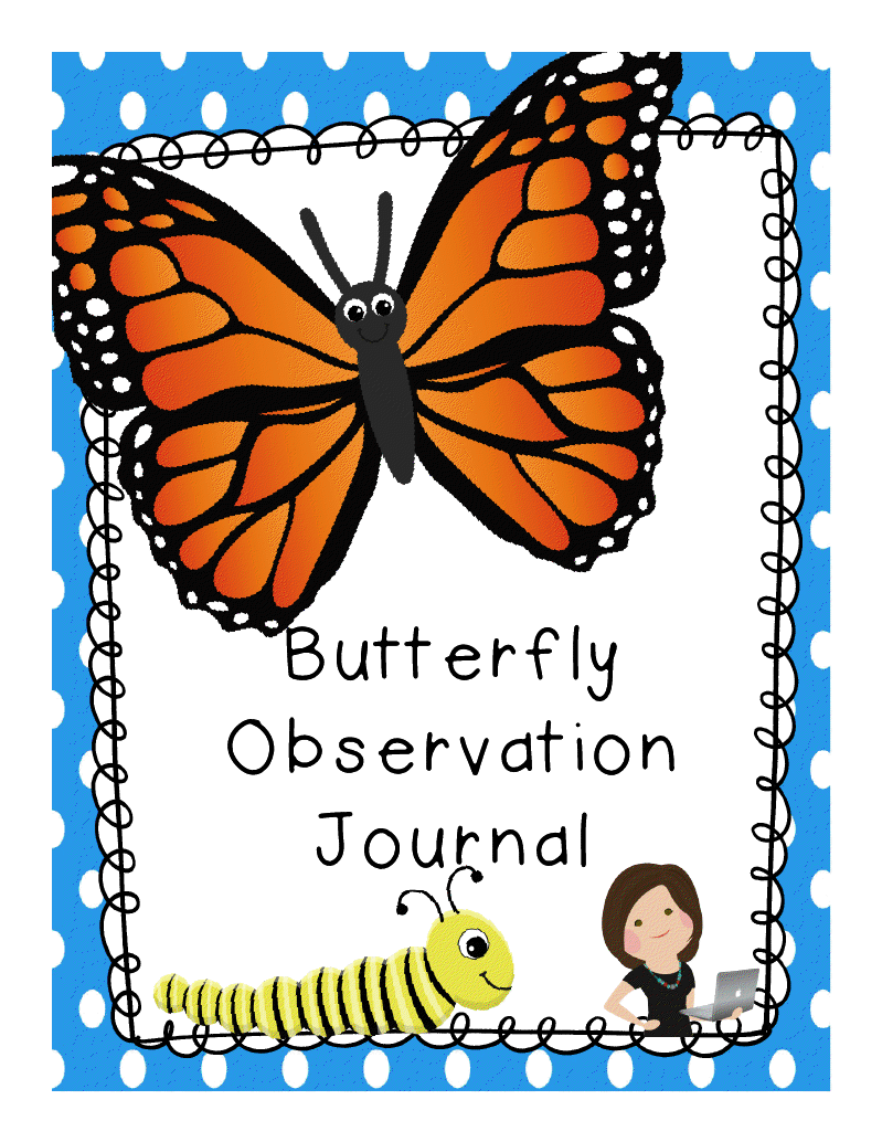 12 Butterfly Observation Ideas Butterfly Life Cycle Kindergarten Science Life Cycles
