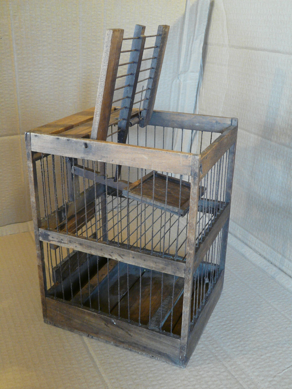 Fourteenacre vintage traps antique bird cages bird