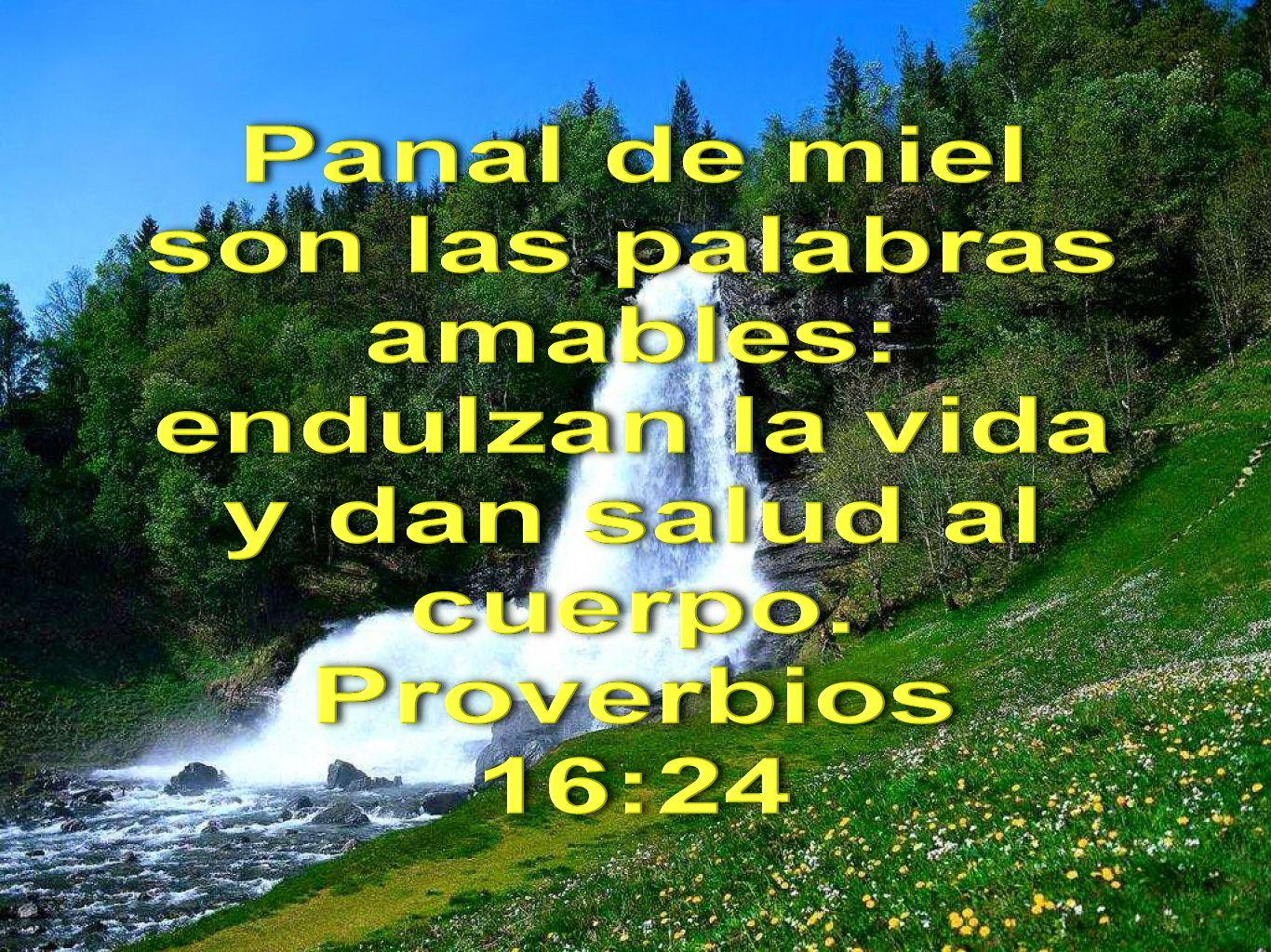 Biblia Paisajes Y Maravillas Proverbios 16 24 Biblia Proverbios Proverbios Palabras De Sabiduria