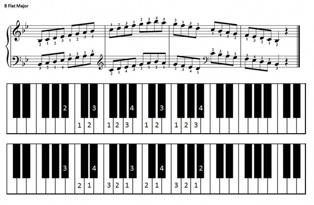 B Flat Major Scale For Piano Learnpianokeys Piano Scales Major