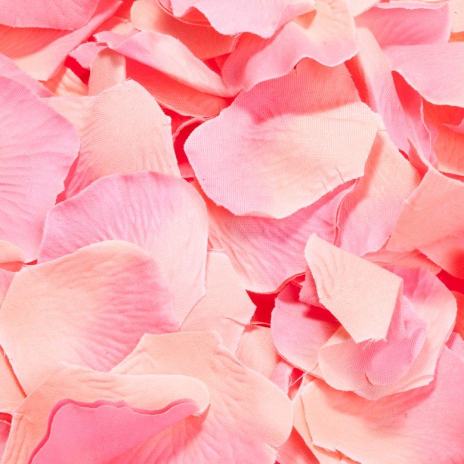 1000 Silk Rose Petals- Coral [A1220 Coral Silk Rose Petals ...