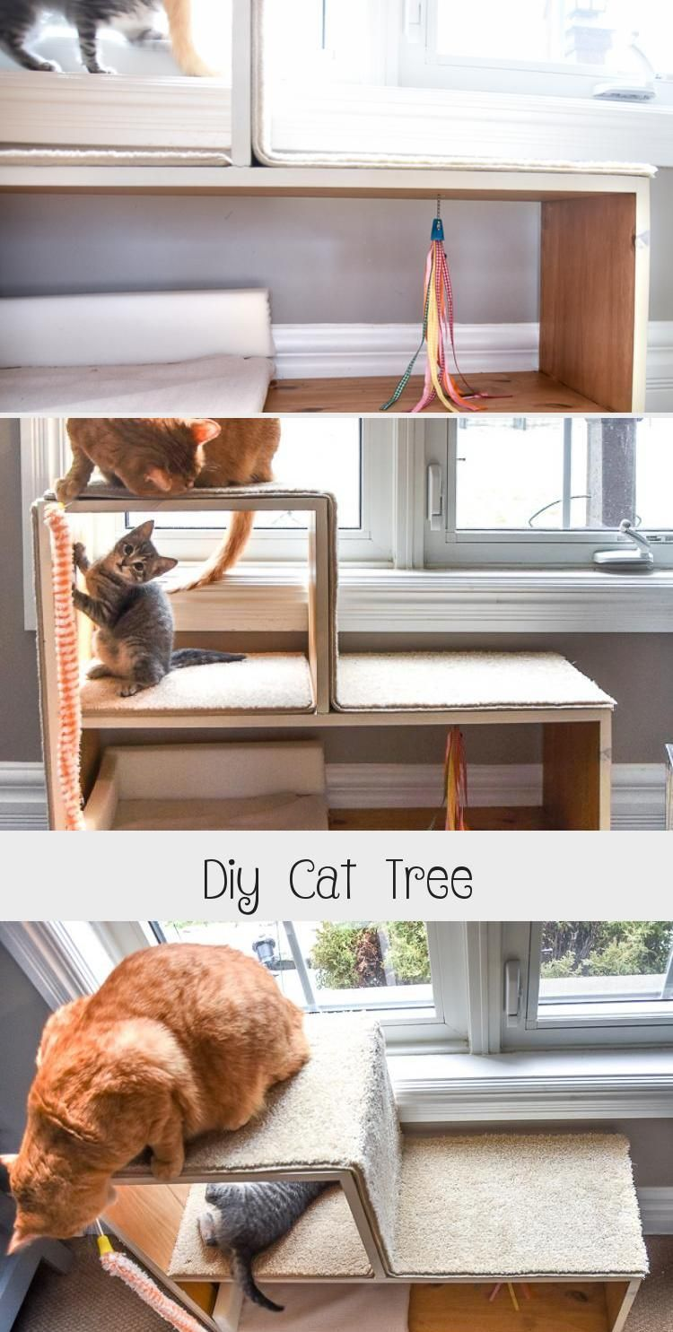 Diy Cat Tree - CATS,  #Cat #catplayground #cats #Diy #Tree