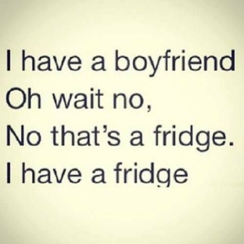 Fridges Are Like Boyfriends I Wouldn T Know But I Can Assume They Would Be Funny Quotes Jokes Quotes Quotes