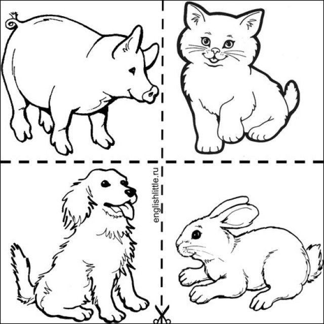 Картинки животных для детей для занятий распечатать раскраска