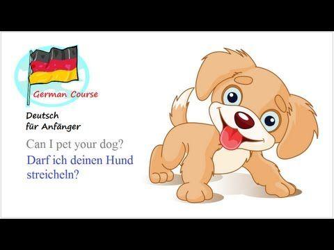German Course [29] Hunde | Deutsch für Anfänger - YouTube