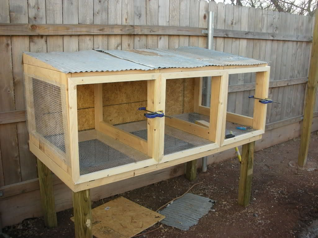 The New Quail Coop Is Finished Quail Coop Raising Quail Chickens Backyard