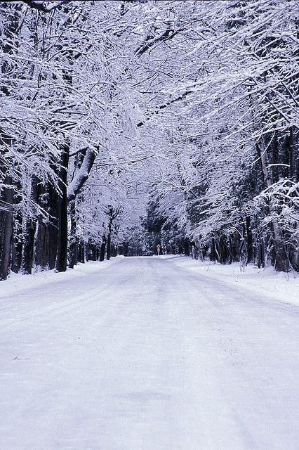 Winter Road Door County Winter Wisconsin State Parks Door County Wisconsin