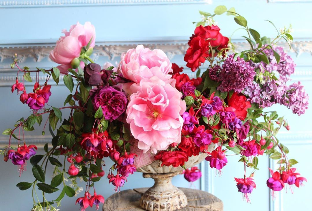 "Cherries Design on Instagram: ""Post from a few years back, spring is near  #cherriesflowers #fuchsia #peonies #gardenroses #flowers #flowerarrangement #wedding…"""