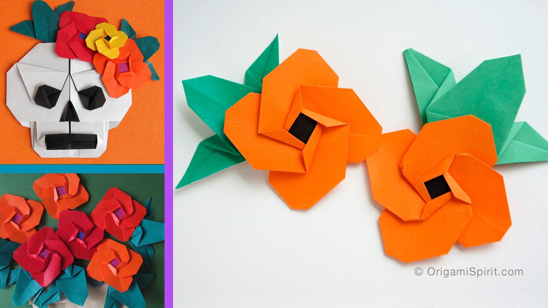 Origami Flower Spanish Eye Flor Ojo De Venus How To Do Rose Diagram By