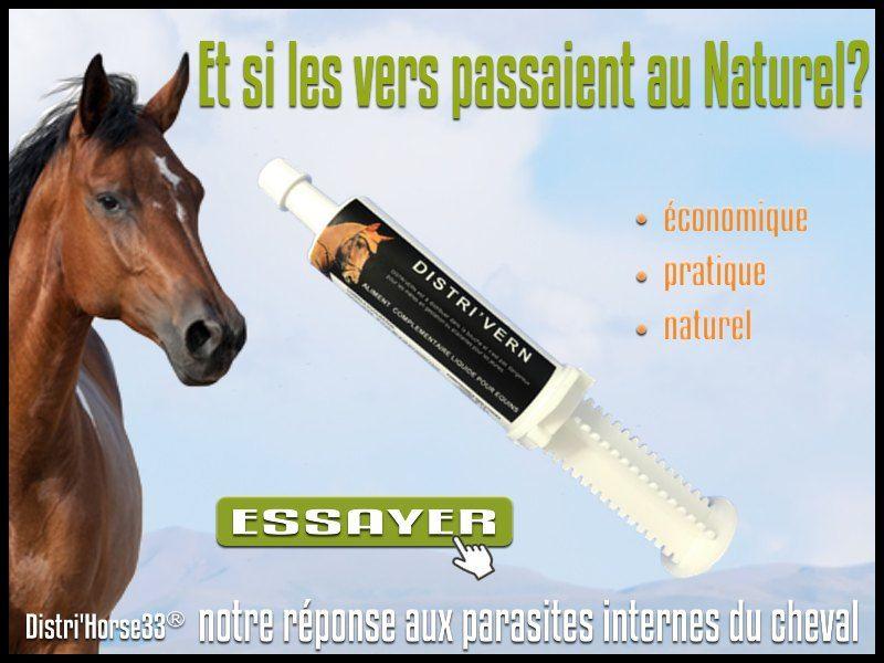 Distri Vern Parasites Internes Cheval Vermifuge Naturel Vermifuge Et Parasite