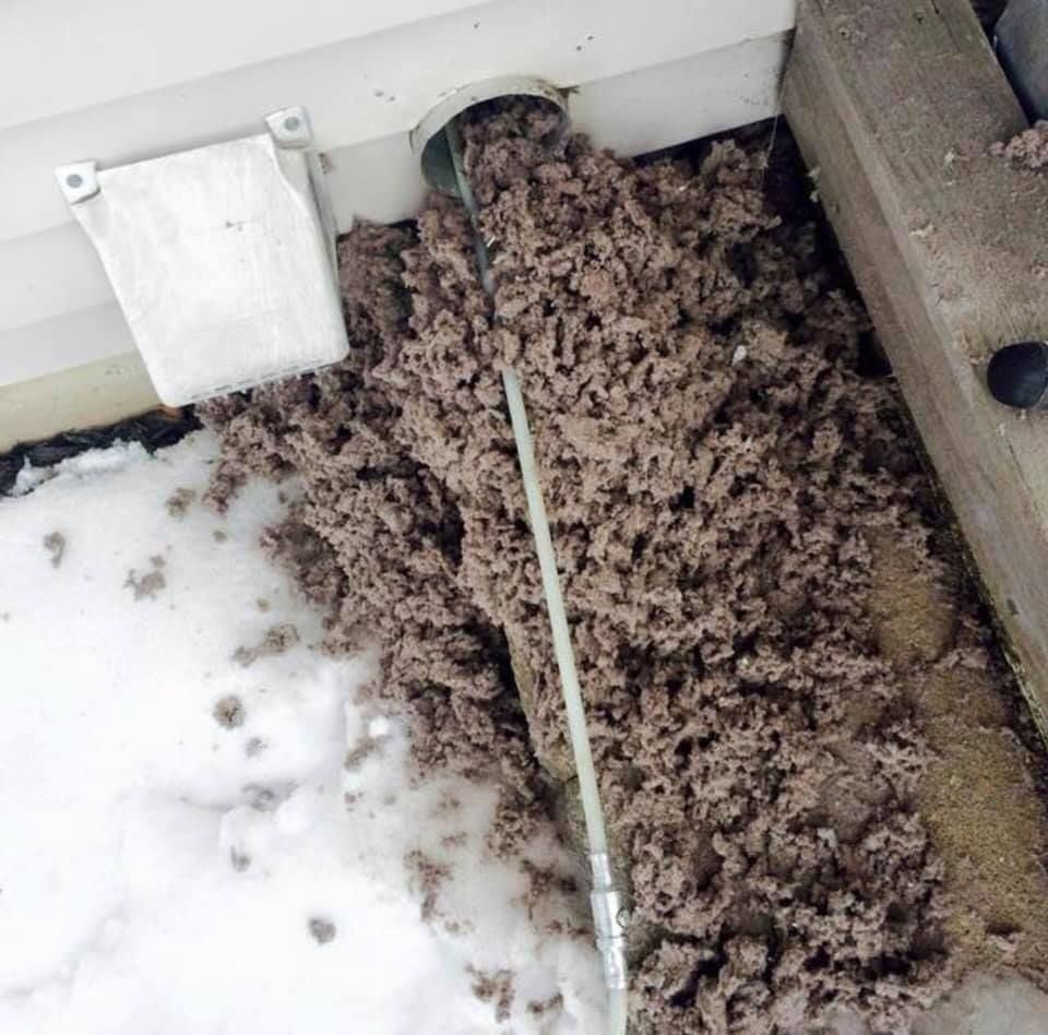 Dryer Vent Cleaning Fort Collins Air Duct Clean Air Ducts Vent Cleaning
