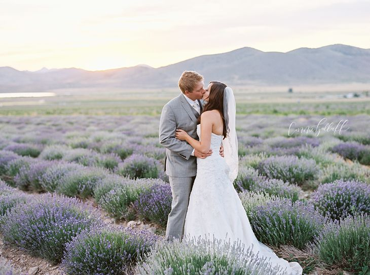 Becca Joey Young Living Lavender Farm Wedding Mona Utah Connie Balluff