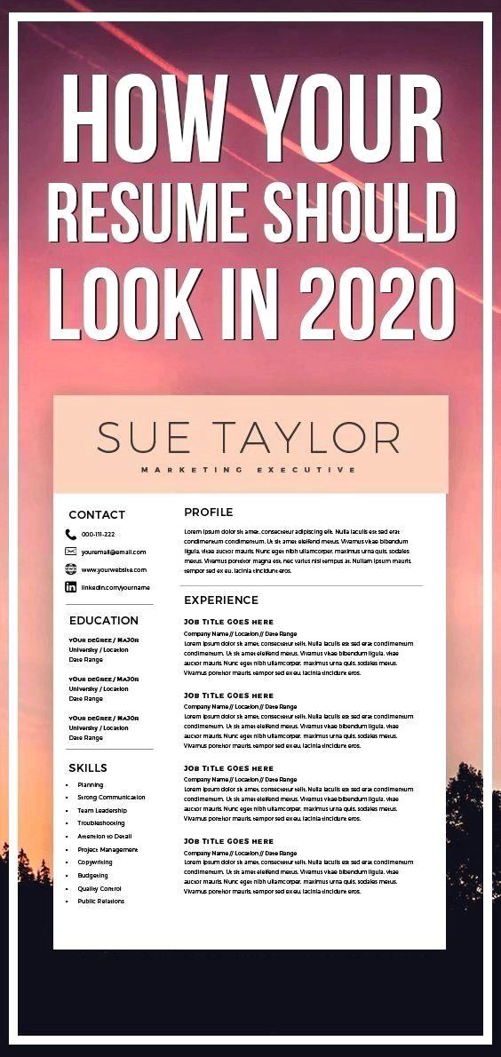 Marketing Executive Resume Modern Resume Template Cv Template