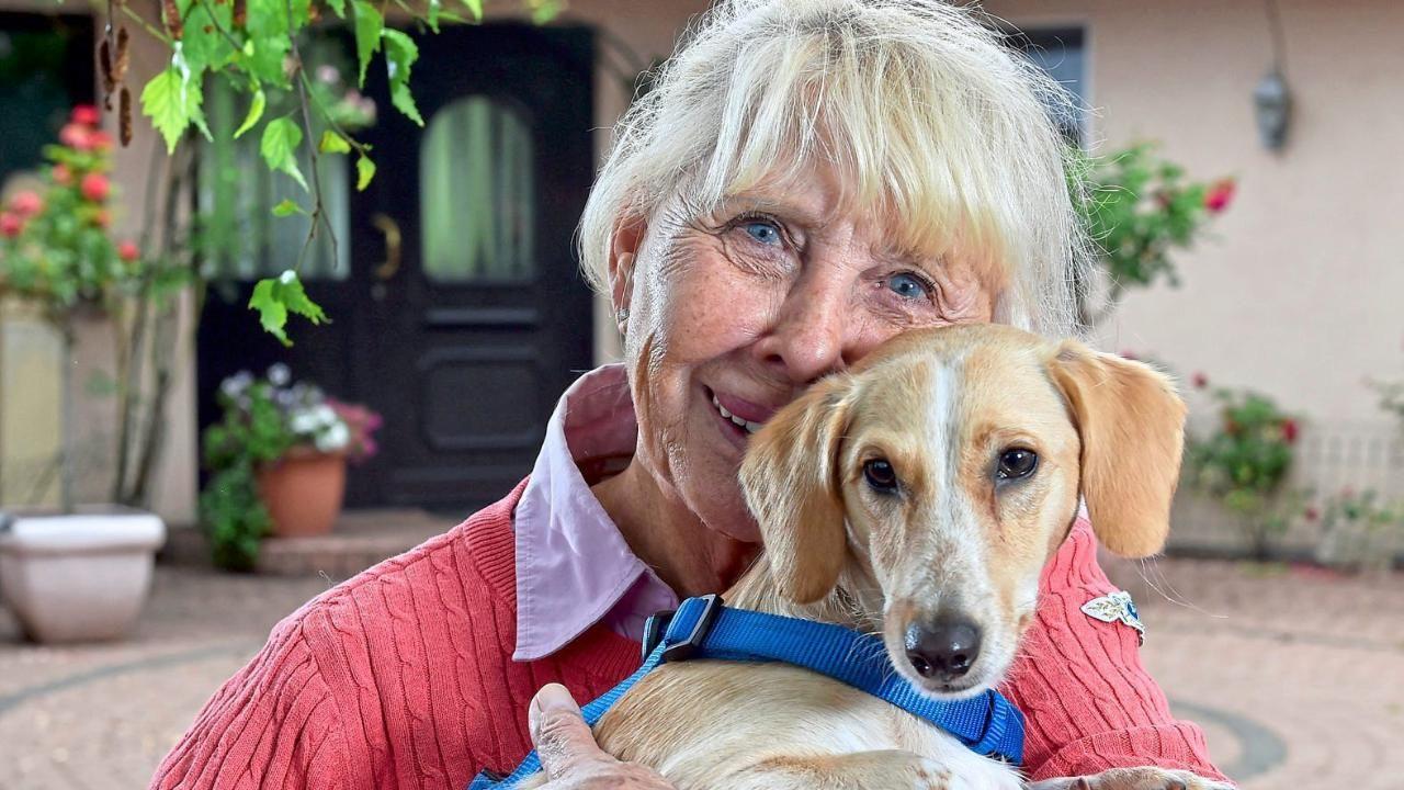 Paderborn Tierschutzerin Gudrun Lumpp Gab Millionen Fur Hunde Aus Dackel Mischling Hunde Alter Hund