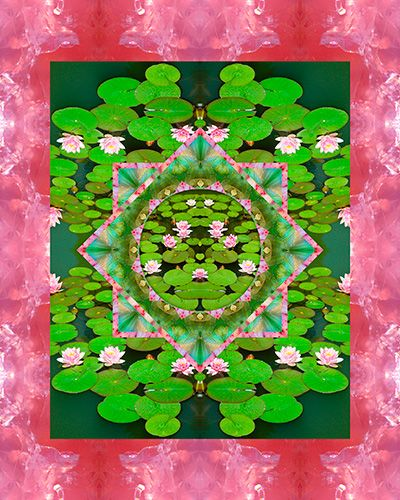 FLOATING WORLD by Bell and Todd.  I LOVE their nature-based mandalas and images.  This one is so wonderful with the pinks and greens of water lilies.   May you be inspired by this image.