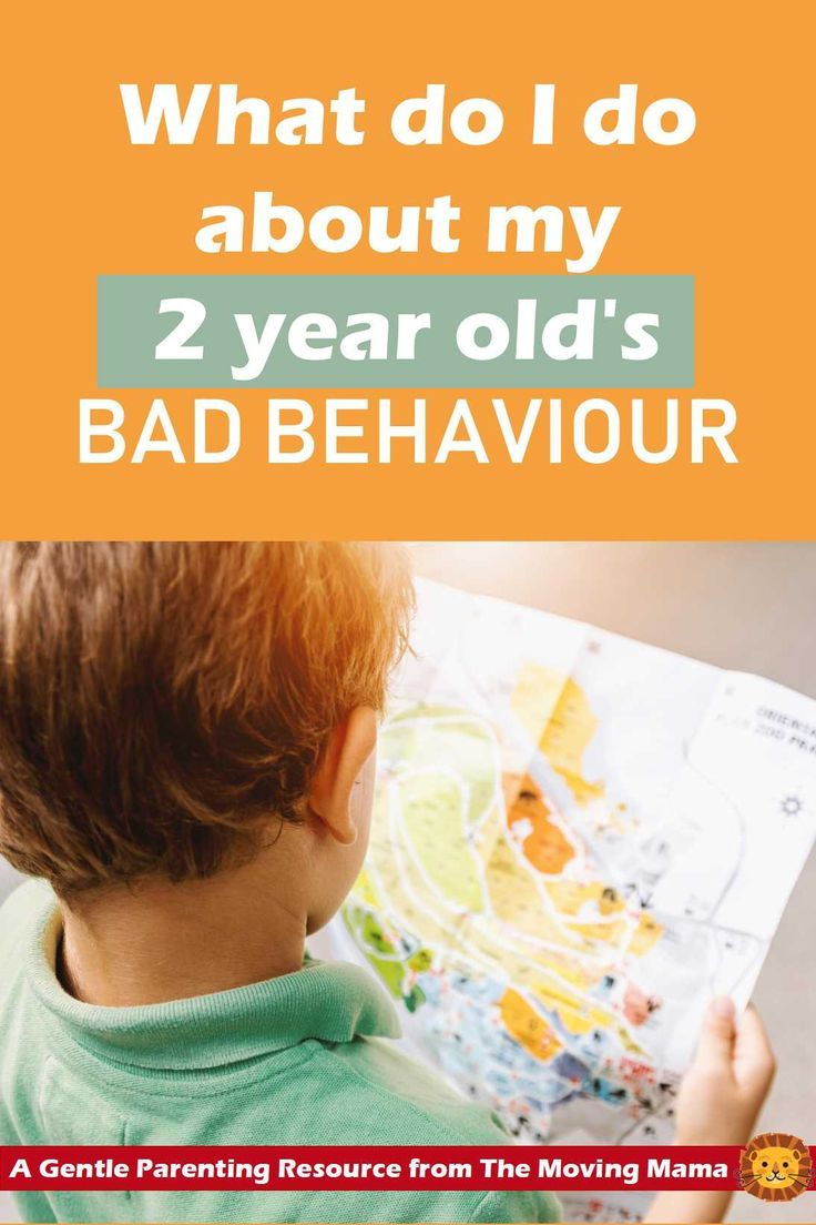 How to Discipline a 2 Year Old | Gentle parenting ...