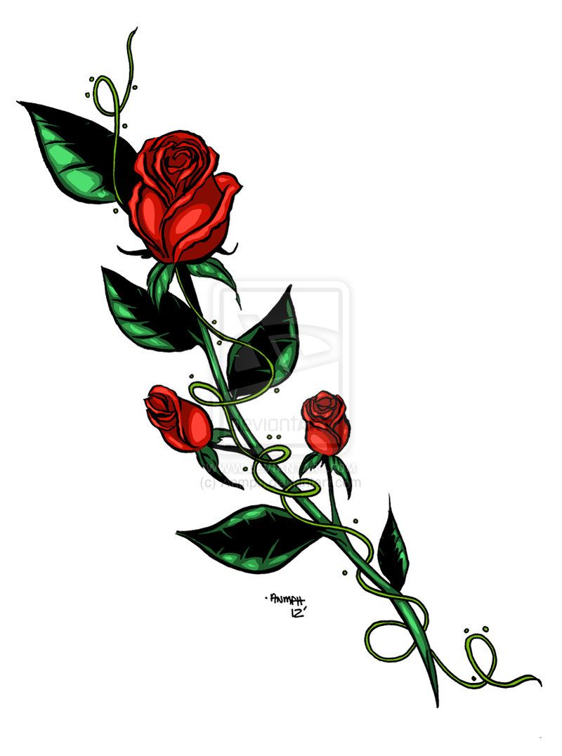 Rose Tattoo Design By Anmph On Deviantart Rose Tattoo Design Rose Vine Tattoos Vine Tattoos