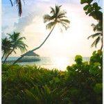Ak'Bol Yoga Retreat & Eco Resort - Belize