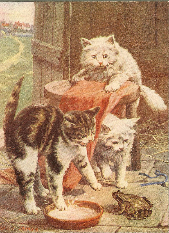1900 S Edwardian Cat Print Three Cats Meet Frog Toad Tabby Etsy Cat Meeting Kittens Vintage Tabby Cat