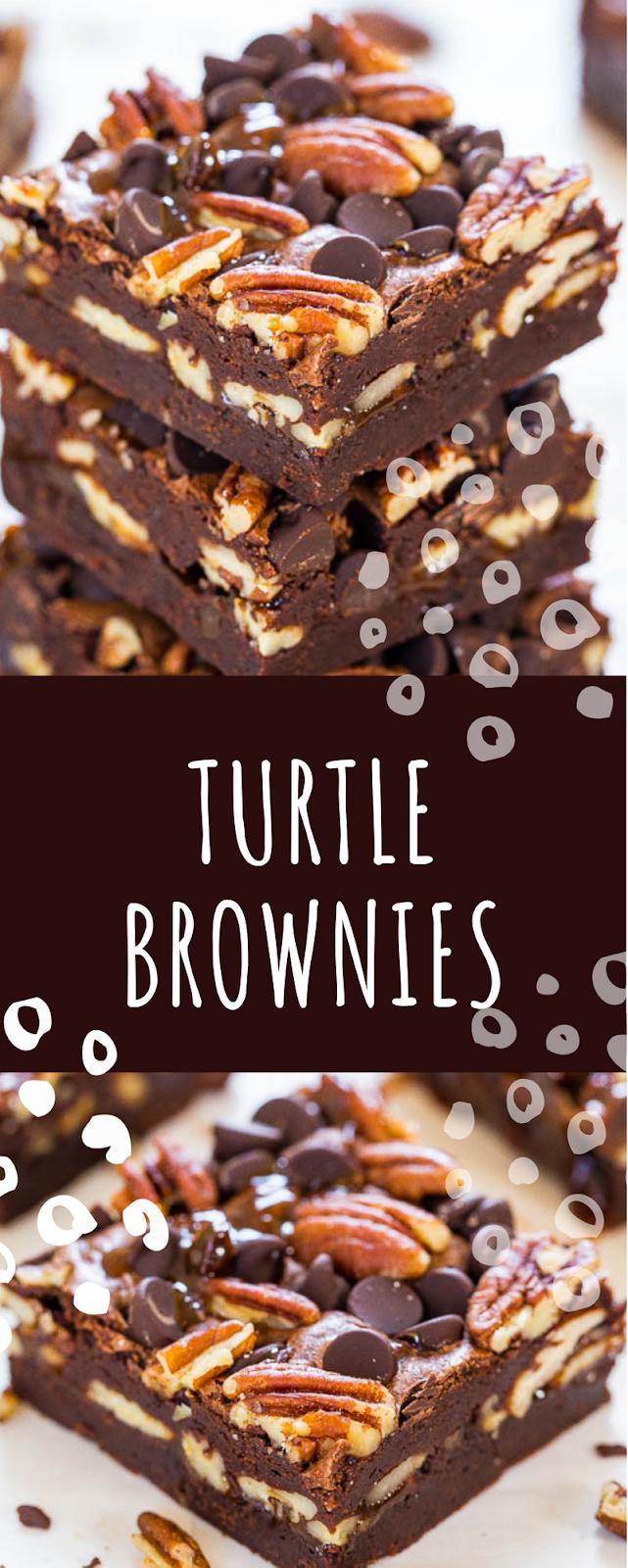 Turtle Brownies - Inggrid Recipes #turtlebrownies Turtle Brownies - Inggrid Recipes #turtlebrownies Turtle Brownies - Inggrid Recipes #turtlebrownies Turtle Brownies - Inggrid Recipes