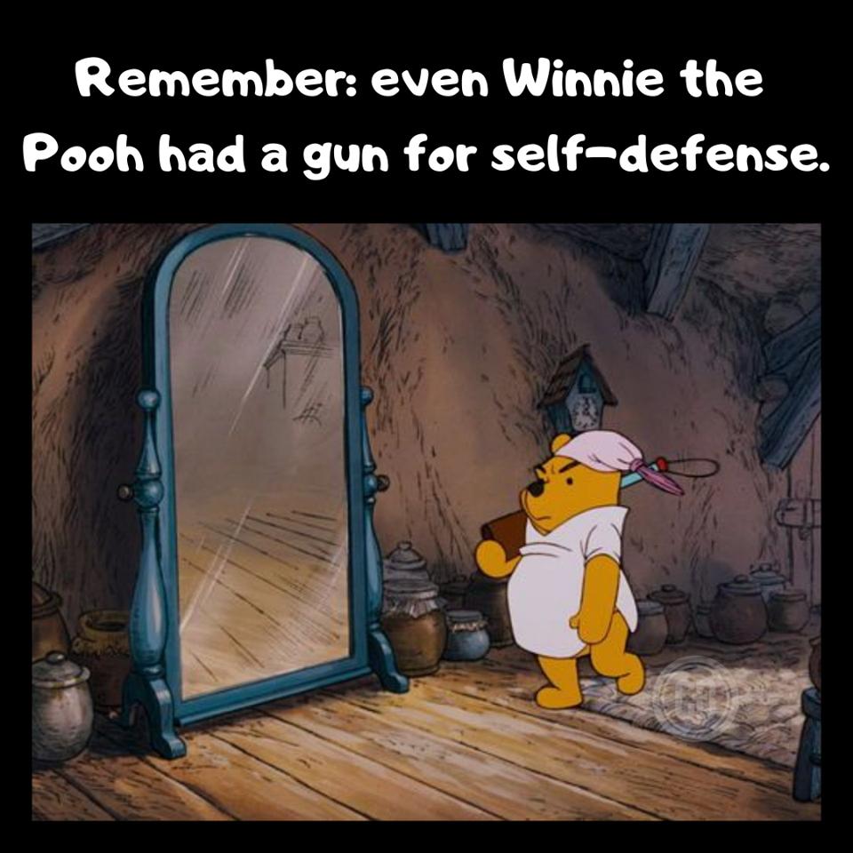 Pin on Gun Memes