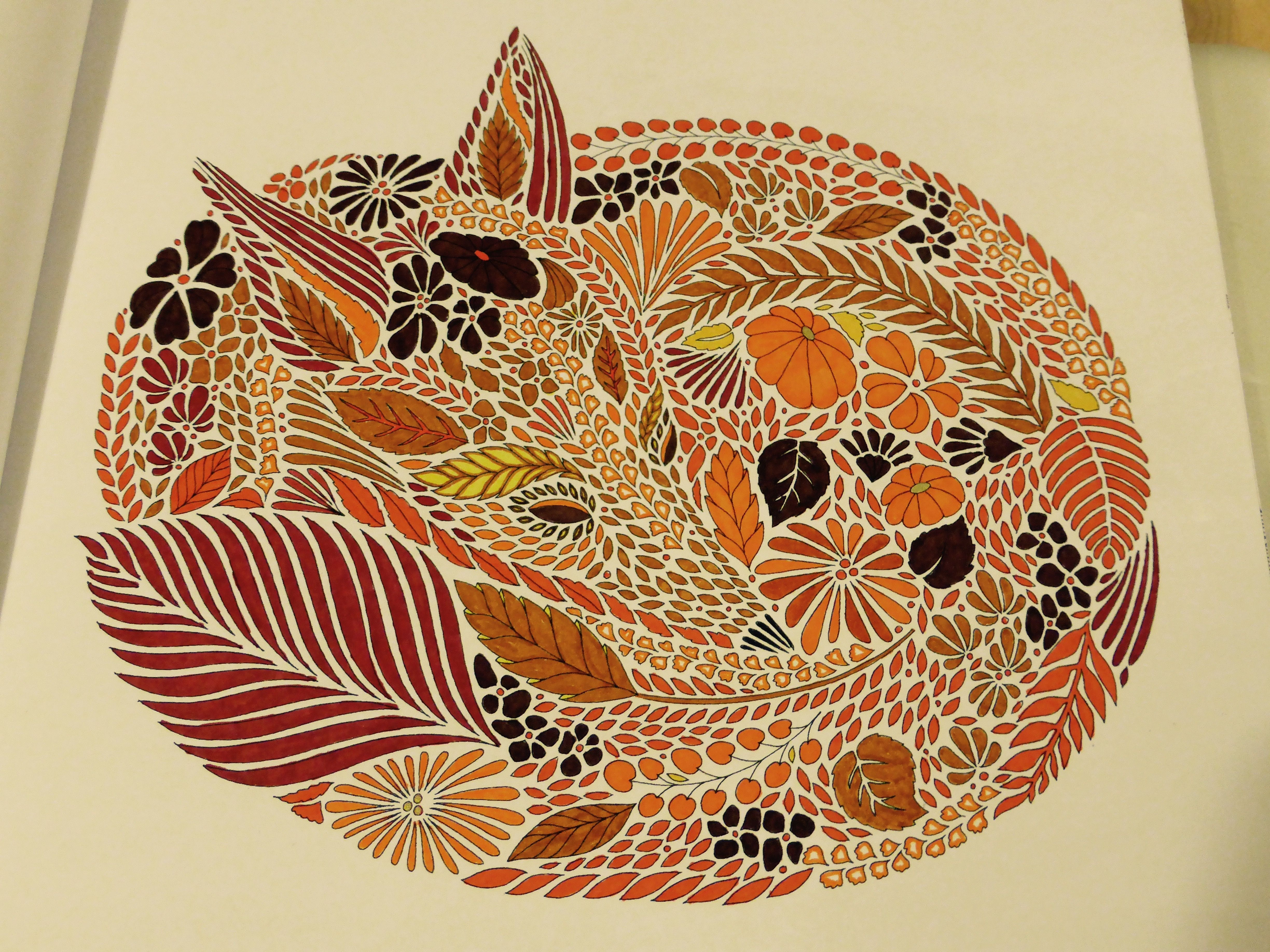 Zen colouring book animals - Fantastic Mrs Fox From Millie Marotta S Animal Kingdom Colouring Book