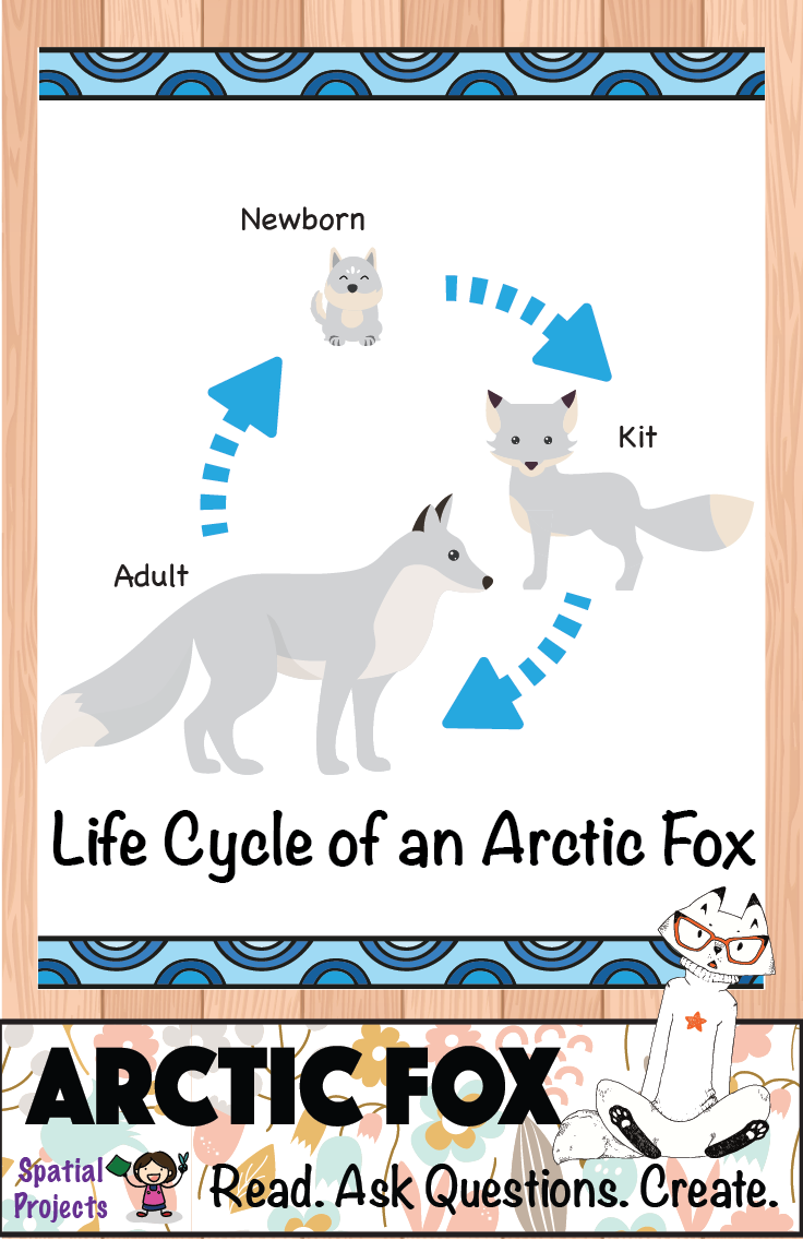All About Arctic Foxes Nonfiction Animal Writing Arctic