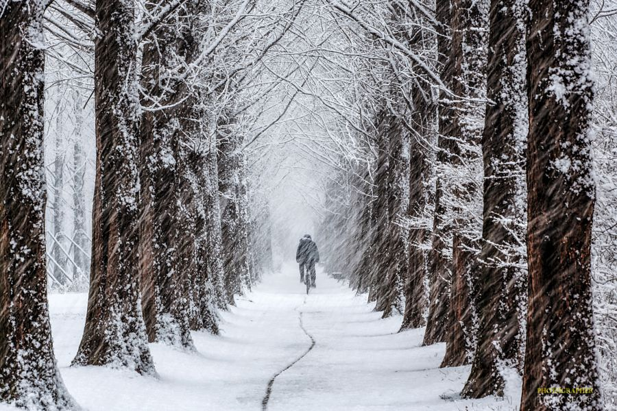 This Week In Popular: Top 25 Photos On 500px This Week (39