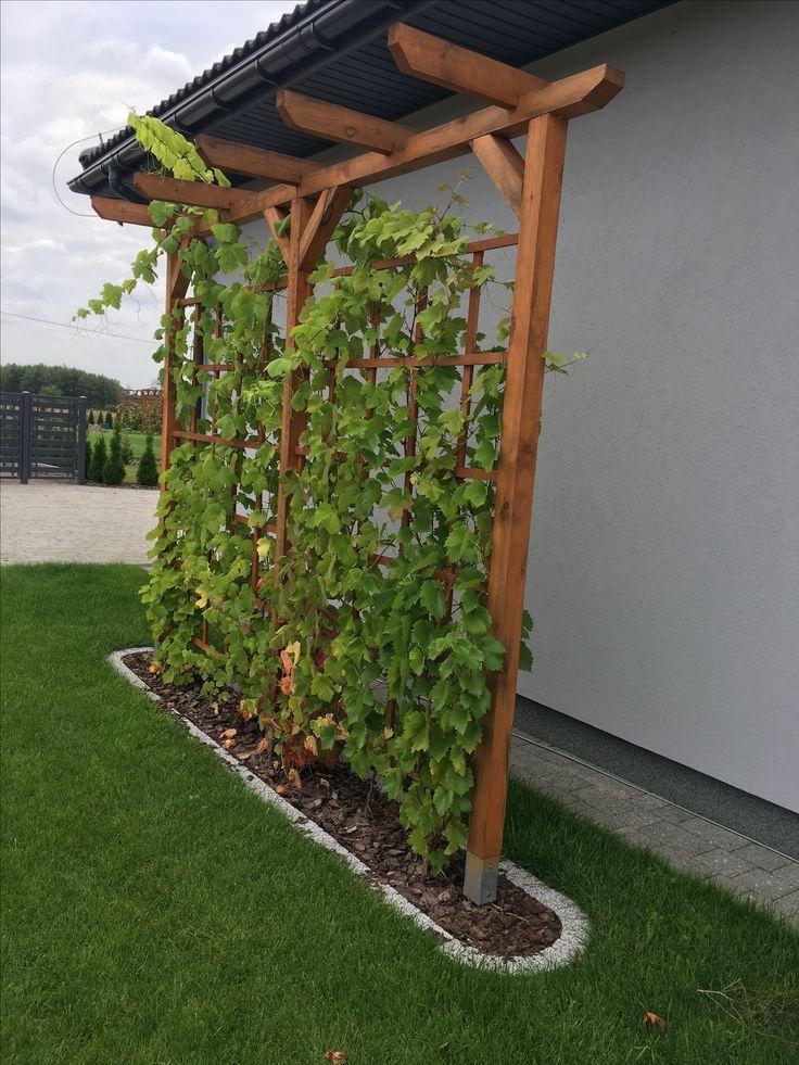 Shielding The Home Gartengestaltung Ideen Gartengestaltung Garten