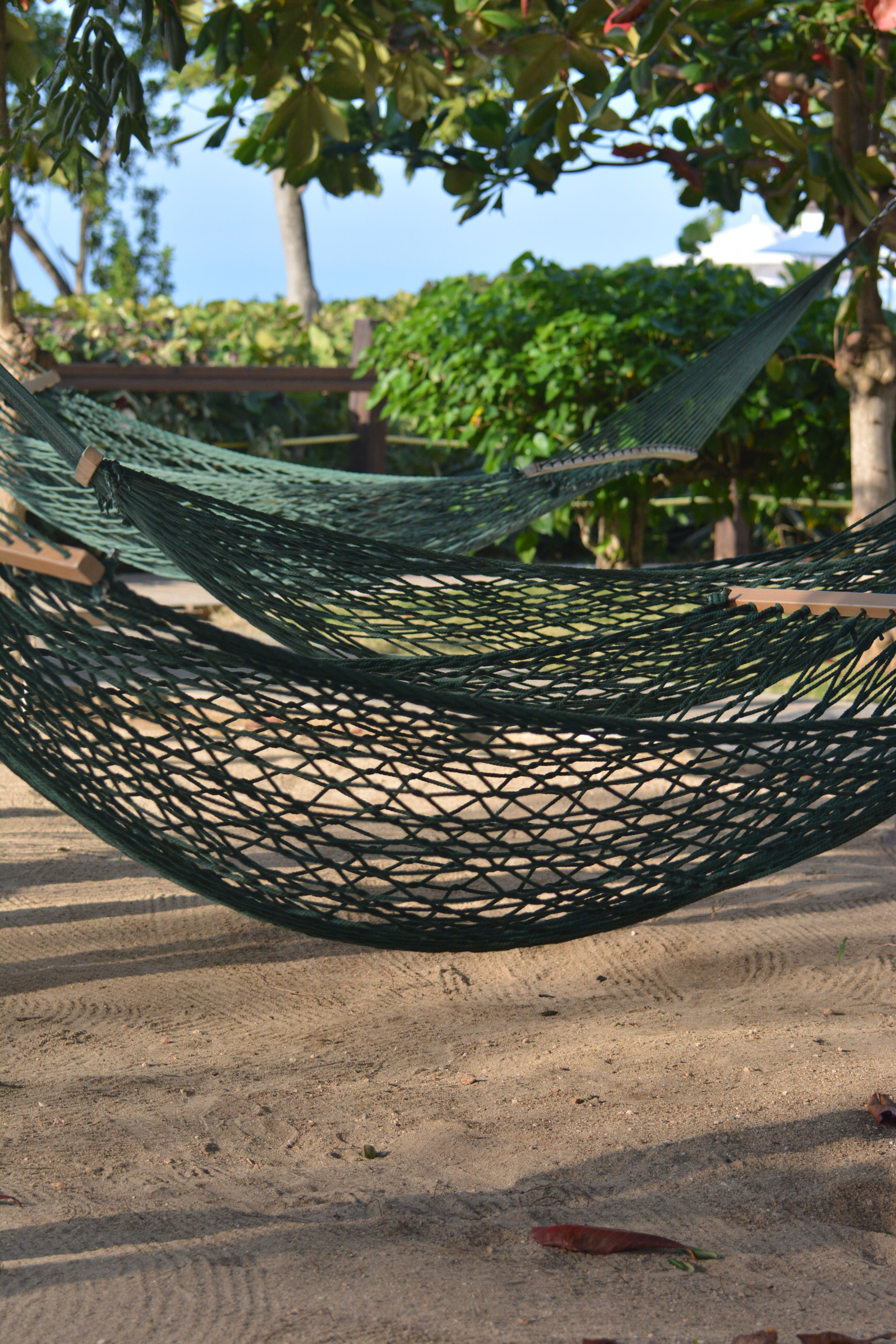 Hammock park at jewel paradise cove jamaica my travel photos
