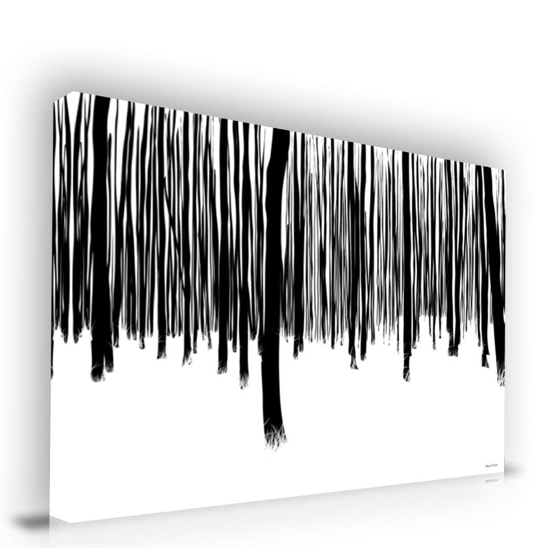 Black and white forest abstract wall art canvas print Black and white canvas art