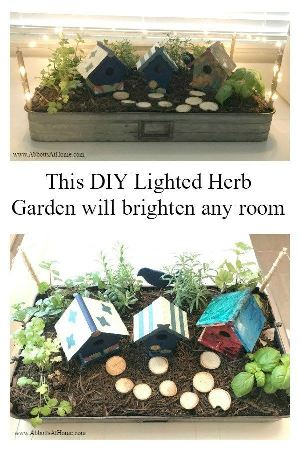 Diy Fairy Garden With Mini Lights Gardening Diy Ideas Garden