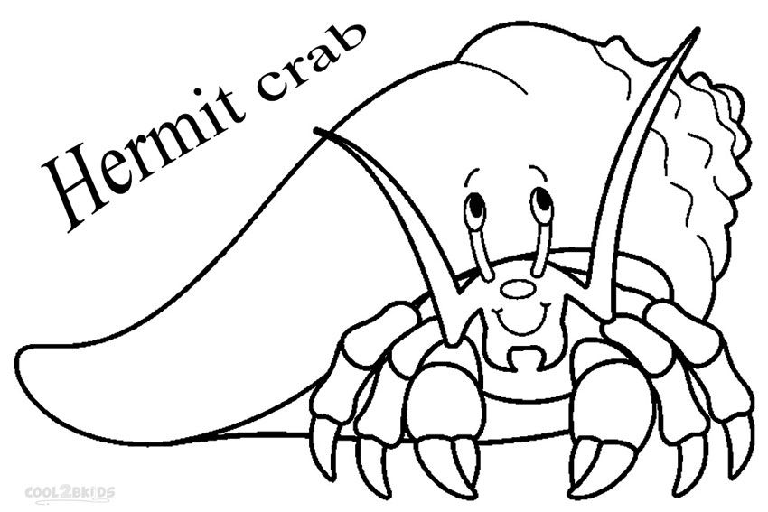 Hermit Crab Facts Habitat Coloring Page Clipart