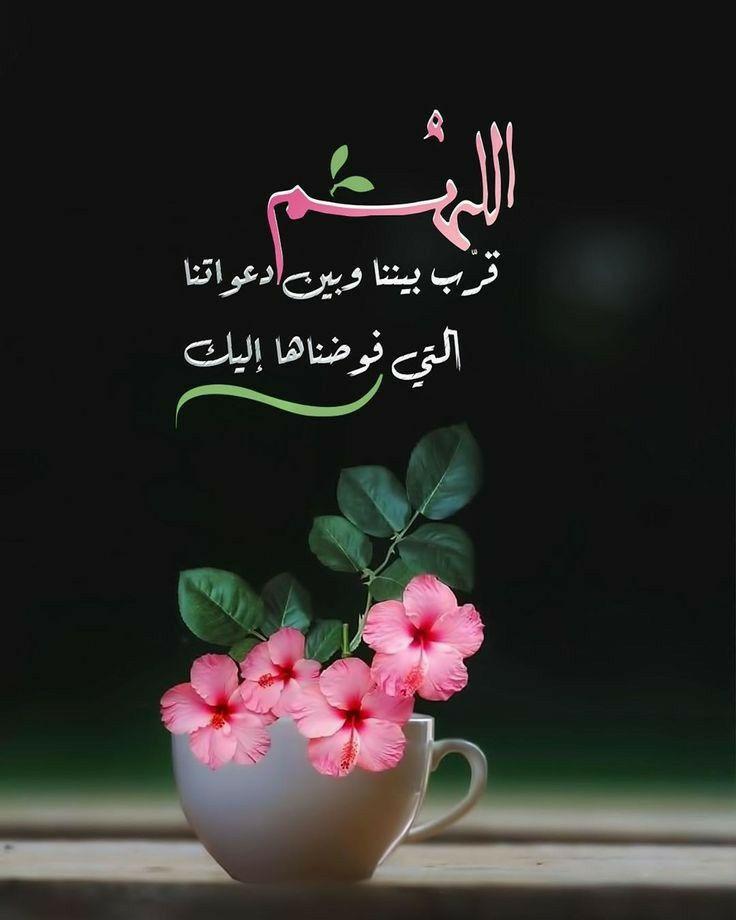 اللهم قرب بيننا وبين دعواتنا التي فوضناها إليك Islamic Pictures Romantic Love Quotes Islamic Quotes Quran