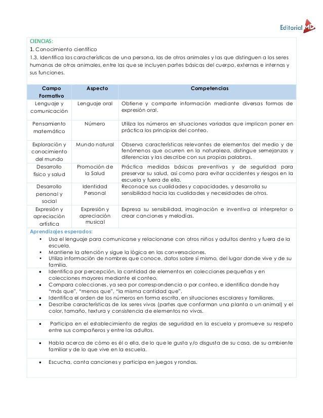 Ejemplo Planeación Didáctica Argumentada Preescolar Planeacion Didactica Preescolar Ruta De Mejora Escolar Planeaciones Preescolar
