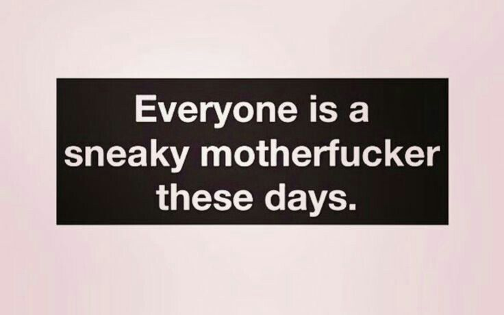 Sneaky | Irreverent Quotes | Sneaky people quotes, Karma ...
