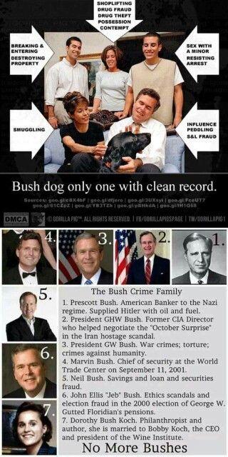 No more Bushes!!