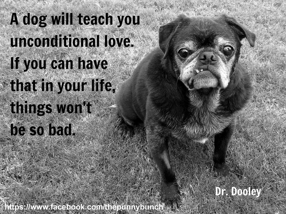 I ❤️ My Dog!! Love u Mochi!