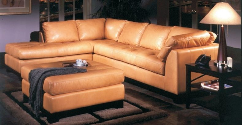 Superbe Omnia Leather Couch