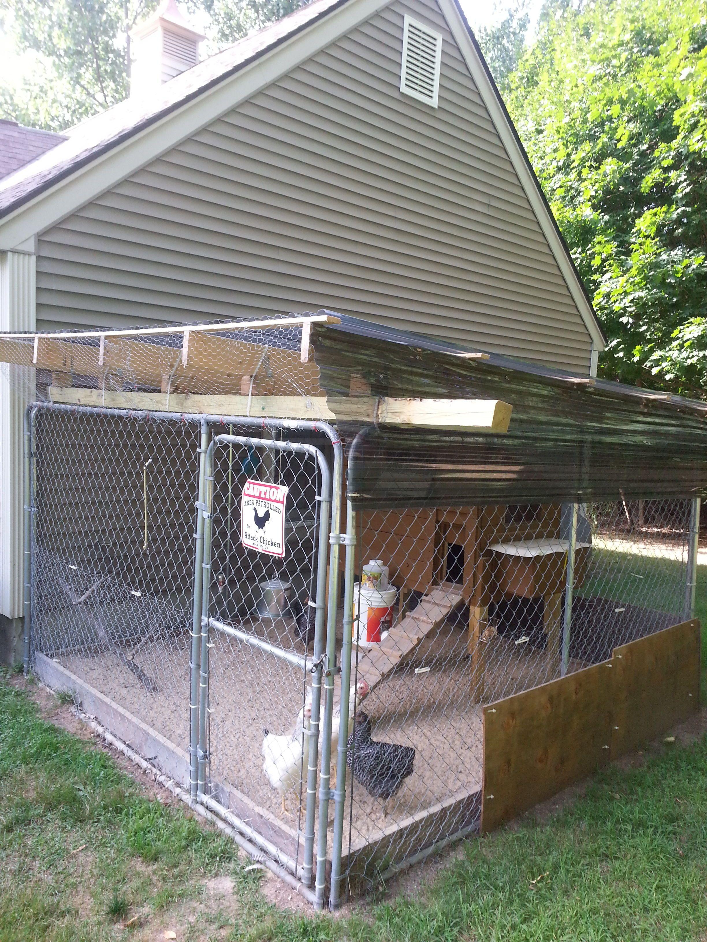 C61bc14e 20130807 170911 Jpeg 2448 3264 Dog Kennel Roof Diy Dog Kennel Chickens Backyard