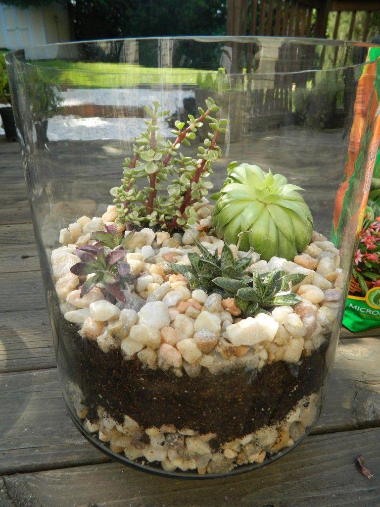 Turn Average Glass Jars into Pretty Terrariums in 5 Easy Steps