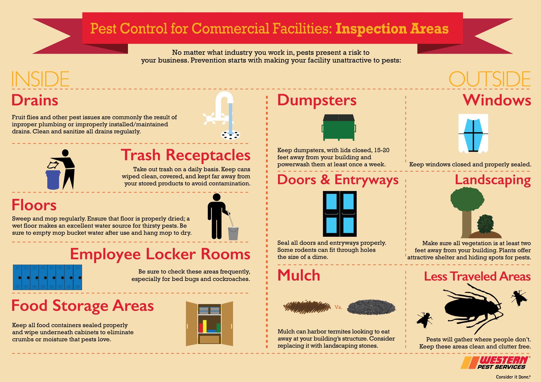 Commercial Pest Control Infographic Pest control, Best