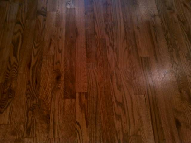 Colonial Maple Stain Floors