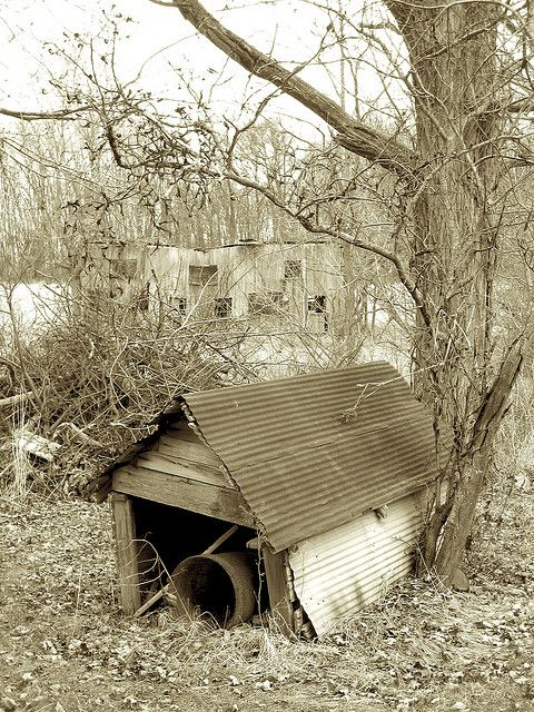 An Old Dog House On The Abandoned Finley Farm In Paris Illinois Dog House Plans Build A Dog House Dog House