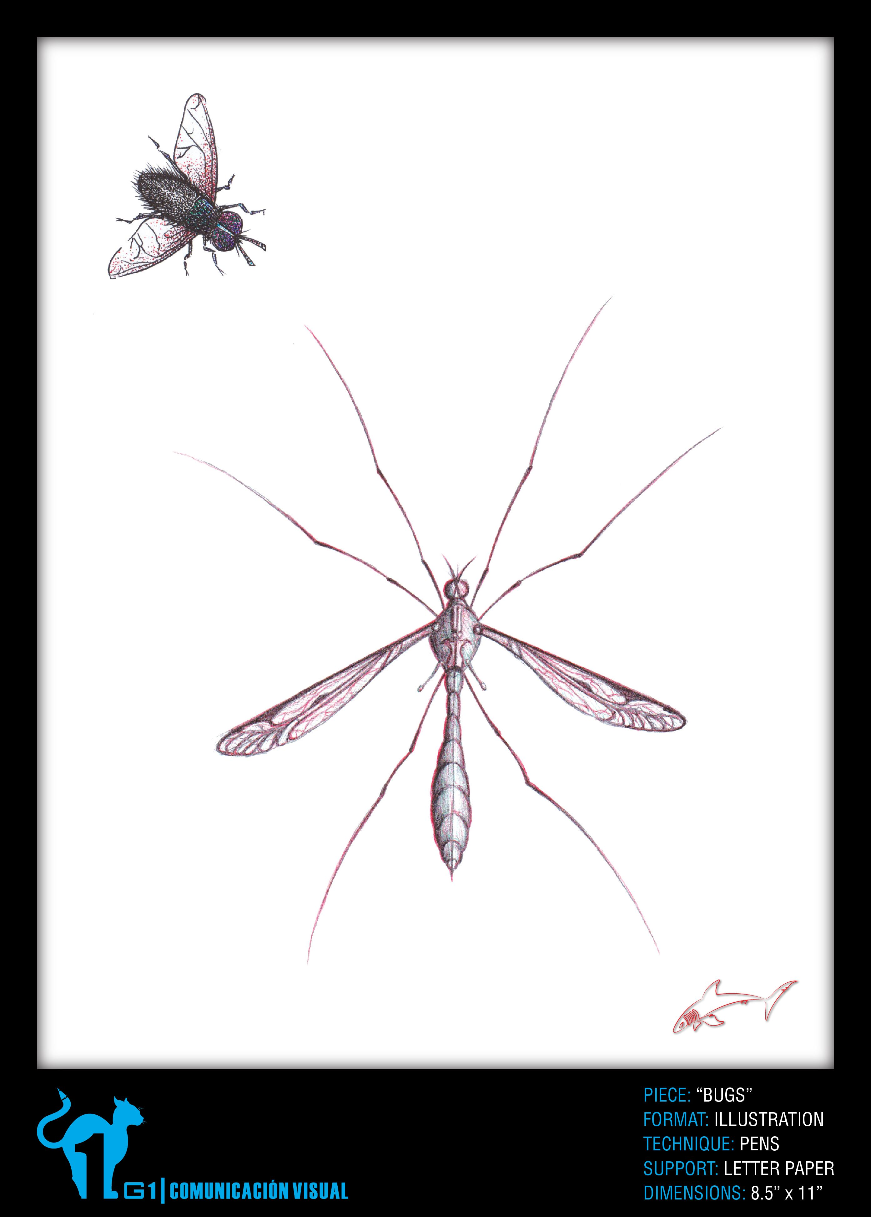 Pin On Scientific Illustration Art