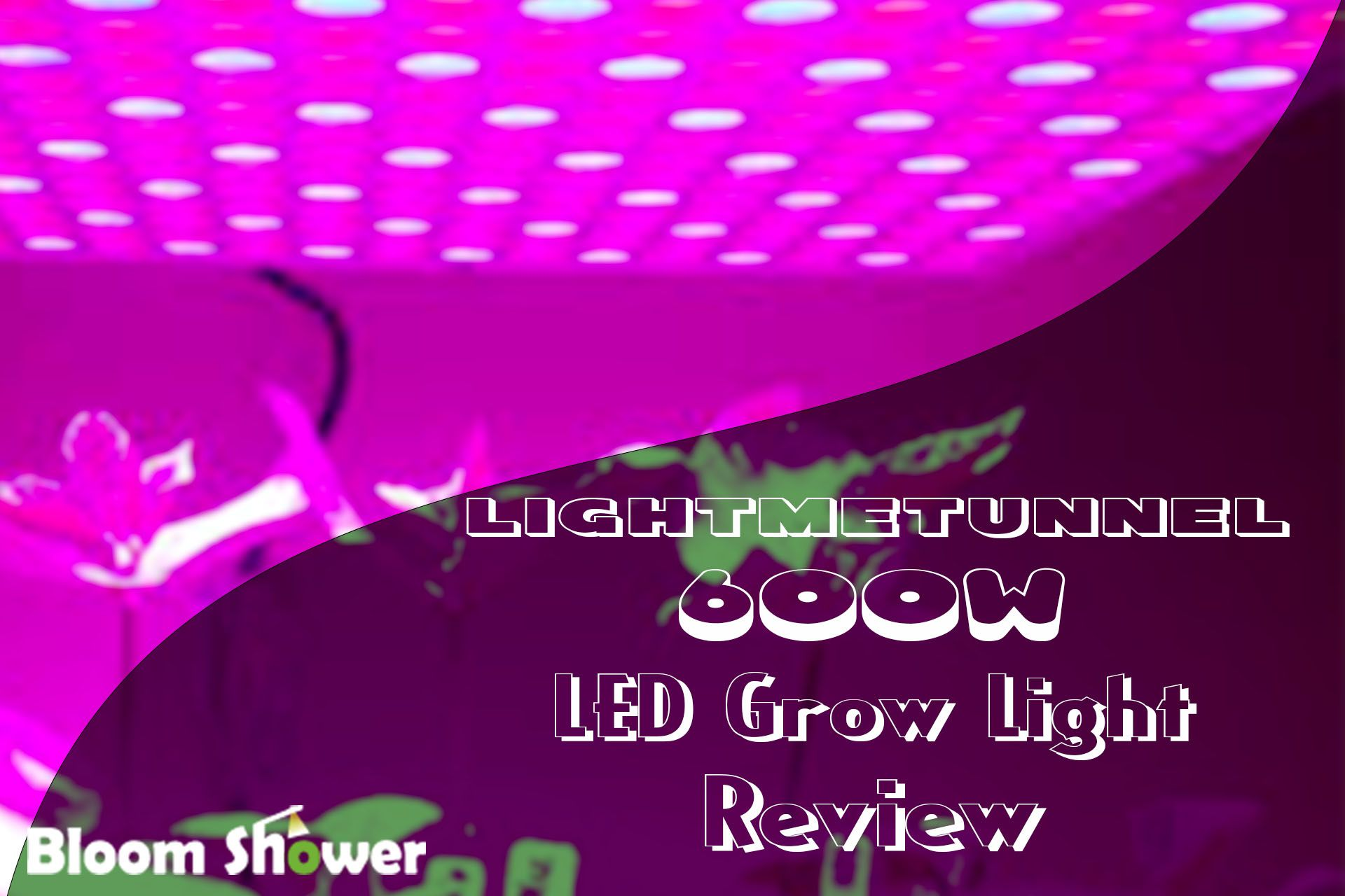 Are You Beginner To Indoor Gardening And Grow Light You Must Start Your Journey Of Gardening With Light This Light Is Made For Beginner And B Tune In 2019 Led