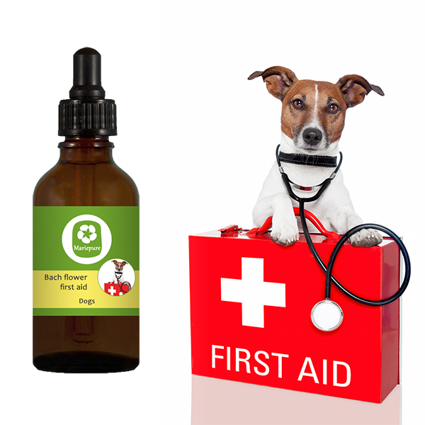 First Aid remedy for dogs Bach flowers, Acute stress